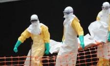 ebola busne